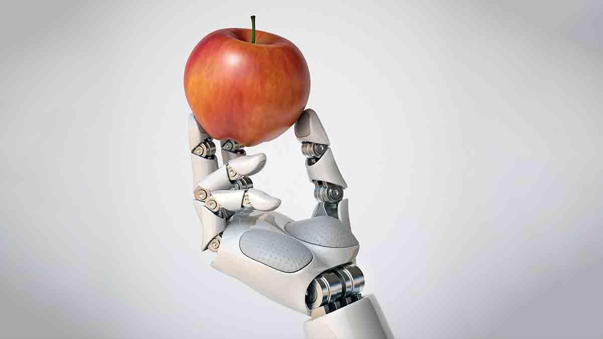 ¿Se puede automatizar el trabajo de un miembro de la Junta?